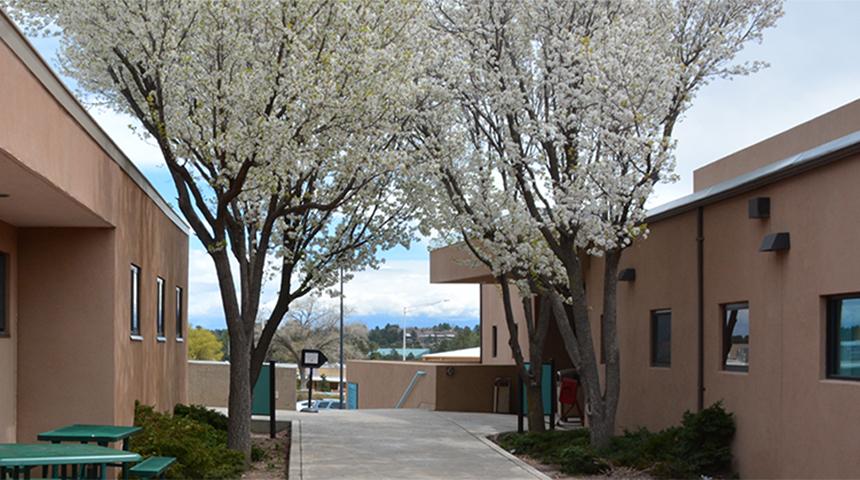 Unm Winter Intersession Courses 2020.Unm Los Alamos The University Of New Mexico